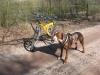 troy-ziva-mountainbike-4_0
