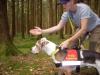 Rettungshund Indigo